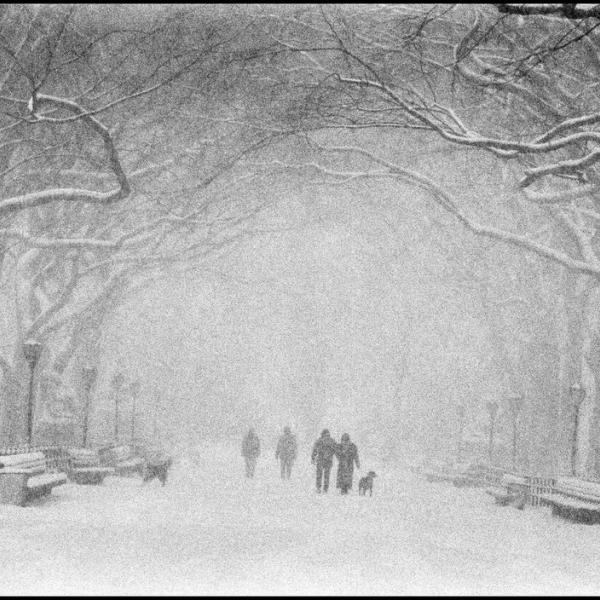 Snowstorm in Central Park, Bruce Davidson, Magnum Photos